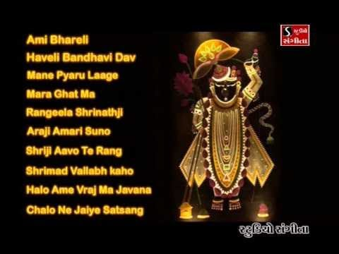 Shrinathji Satsang  Top 10 Songs  Maara Ghat Ma Birajta Shrinathji