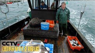 [国际财经报道]探秘全球动物保护区 阿根廷马德林港:手工业捕鱼让海洋休养生息| CCTV财经