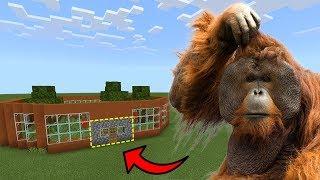 How To Live Inside an Orangutan Farm in Minecraft PE   MCPE Journalist