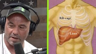 What a Liver Shot Really Feels Like | Joe Rogan
