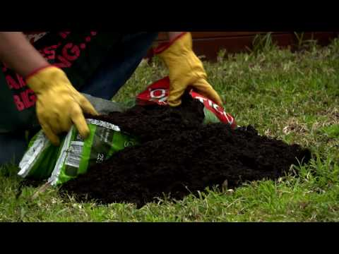 How To Top Dress & Aerate Your Lawn - D.I.Y. At Bunnings