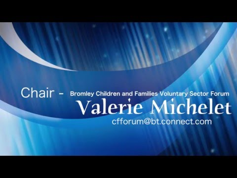 The voluntary sector perspective - Valerie Michelet