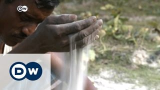 Climate change severely affects Bangladesh | Business News