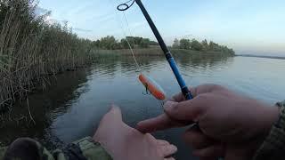 Осенний жор щуки начинается. Рыбалка на спиннинг 2020. Щука на этот Воблер КЛЮЁТ ВСЕГДА