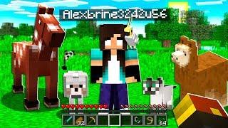 noob Girl finds STRANGEST Minecraft Pets...