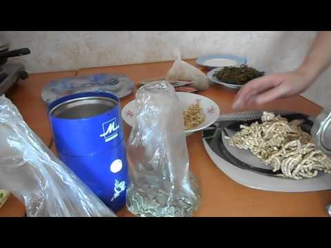 Ламинария слоевища Морская капуста