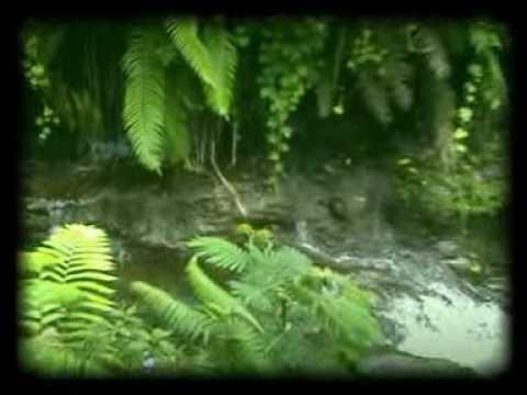 Hutan Rumah Kita