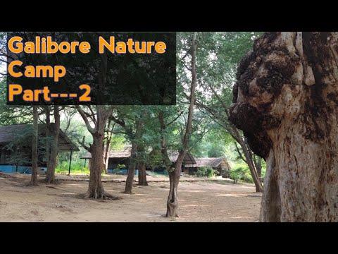 Galibore এর দ্বিতীয় দিনটা কেমন কাটলো।Galibore Nature Camp Honest Review।।