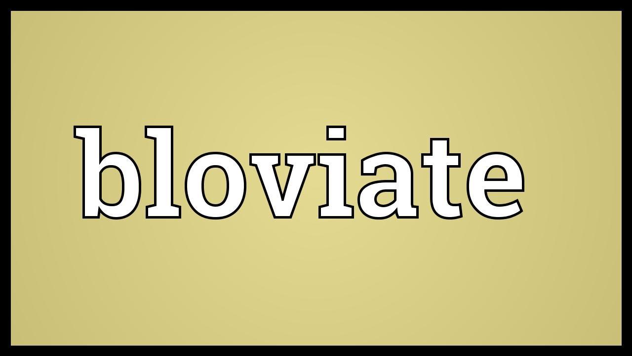 Bloviate in a sentence