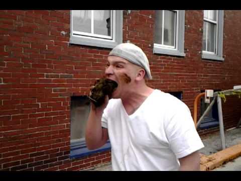 man eats elephant poop