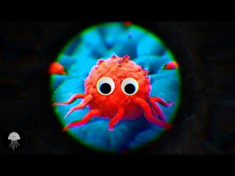 Le cancer est-il un organisme vivant ? - DBY #60