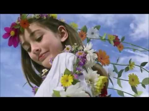 Baba Ki Rani Hoon Aankhon Ka Paani Hoon  4K Video HD  [ Alka Yagnik ]