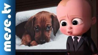 BÉBI ÚR (Boss Baby) – filmelőzetes (x)