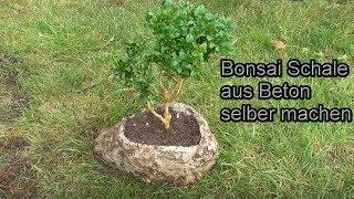Bonsaischale aus Beton kreativ und günstig selber machen – DIY Beton Garten Deko / Anleitung