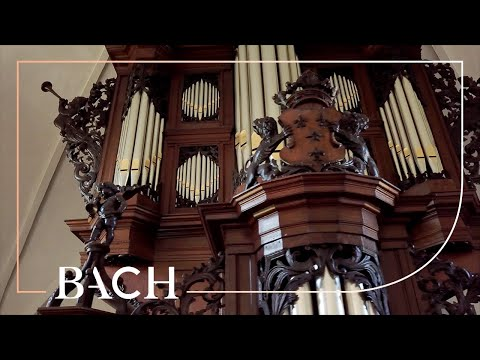 Bach - Concerto In C Major BWV 594 - Kofler | Netherlands Bach Society