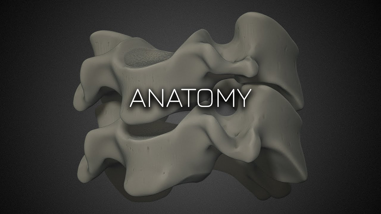 Cervical Spine Radiographic Anatomy - Featured Video
