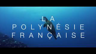 Voyage en Polynésie Francaise | 4K - Drone Mavic Air - GoPro Hero 7