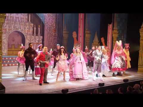 Sophie Bright - Sleeping Beauty - Dec 2017 - Grove Theatre