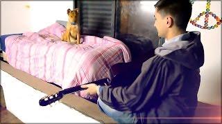 VLOG | Mi perra escucha el sonido de una Guitarra | El Perro