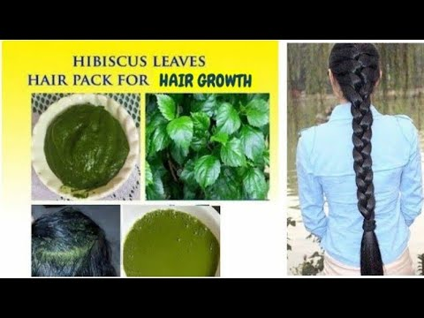 Hair Growth With Hibiscus Leaves & Stop Hair Loss