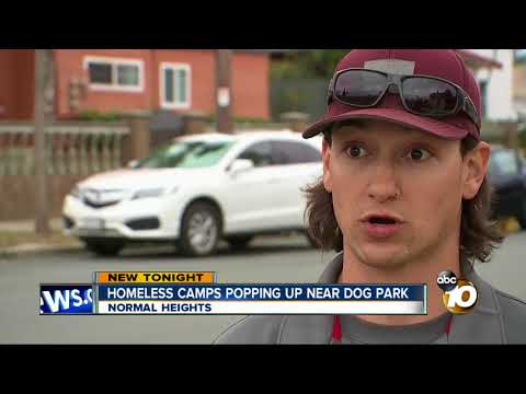 Homeless camps popping up near dog park