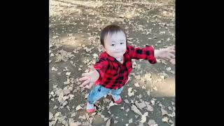 【アレク&のんちゃん】祝‼️外で歩きだしたおちびーぬの巻き thumbnail