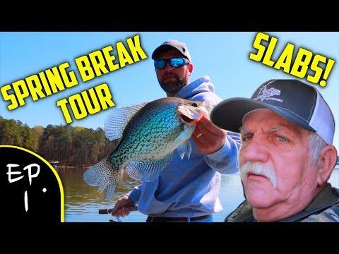 GIANT Crappie On Lake Allatoona!!! (Spring Break Tour)