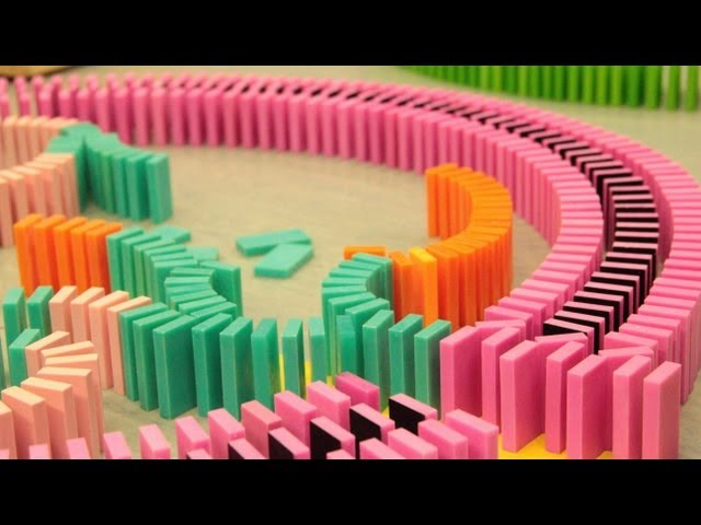 Over 20,000 Dominoes - One Chain Reaction