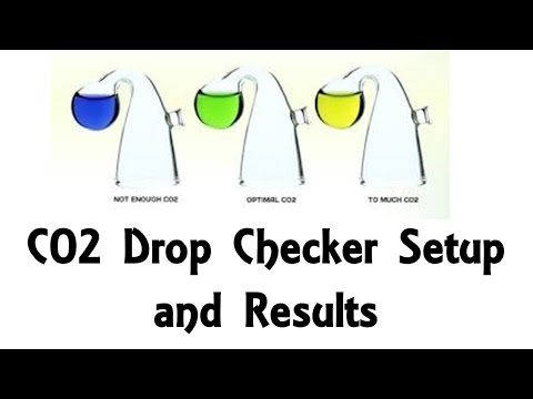 Co2 Drop Checker Setup and Results Comparison For Optimum Co2 in Aquarium