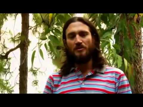 John Frusciante Interview on Creativity & Inspiration