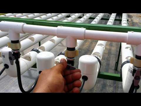 Profesional Hydroponics System