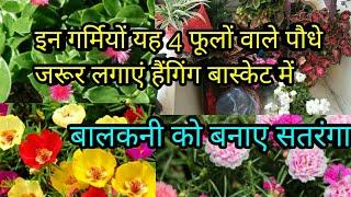 गर्मियों में इन फूलों से सजाए हैंगिंग बास्केट,बालकनी को  बनाएं रंग बिरंगा,anvesha,s creativity