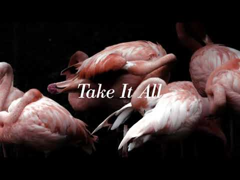 Iceage - Take It All