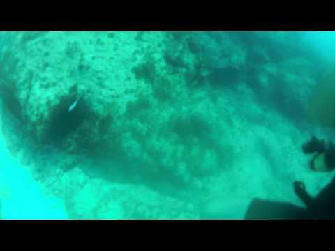 First Dive Ever - Punta Cana Discover Scuba - 2013-05-12