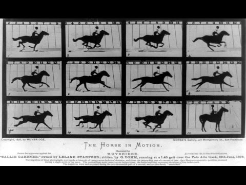 The Weird World of Eadweard Muybridge