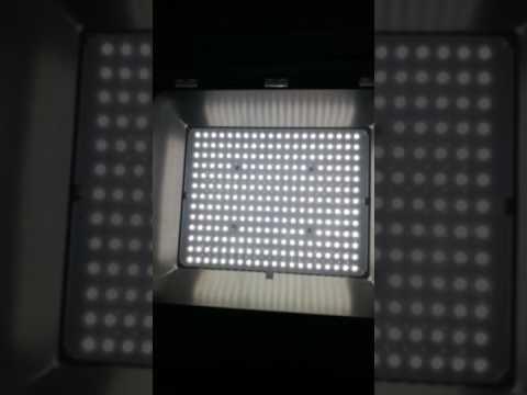 Gobright Flicker free AC DOB driverless led floodlight