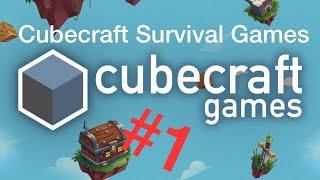 DIESER SCHEIß BUCK   Let's Play Minecraft Survival Games   TheArda 357#