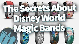 The Secrets People Don't Know About Disney World Magic Bands!