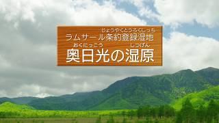 「奥日光の湿原」は、栃木県日光市にあります。面積は260.41ヘクタール...