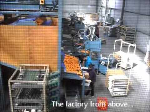Griffith Orange Factory