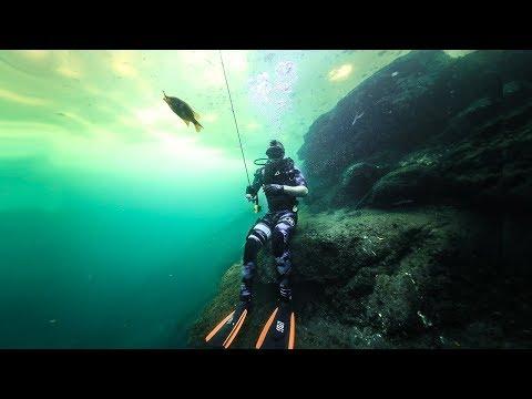 Underwater Fishing Challenge In CLEAR Water!! (Tropical Fish) | Jiggin' With Jordan