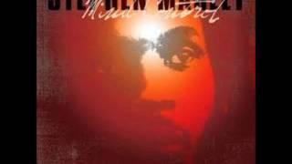 master blaster-Stephen Marley