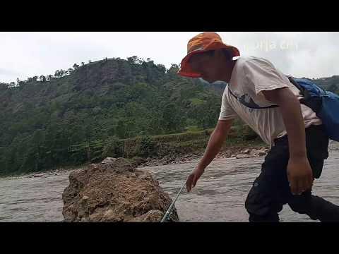 Fishing Goonch Catfish In Kaligandaki River   Fishing In Nepal