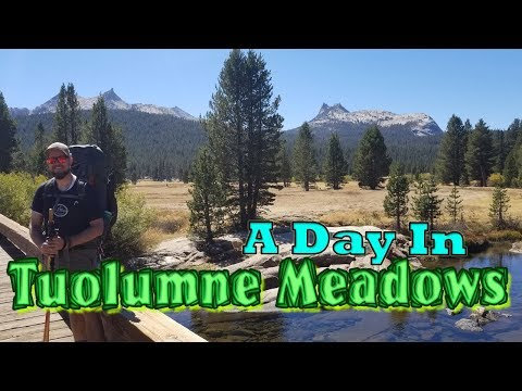 A Day In Tuolumne Meadows