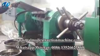 500kg/h palm kernel oil expeller machine, palm kernel oil press machine running video