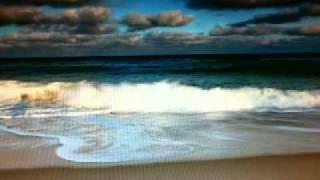 FEVER - Michael Bublé / Elvis Presley (Live Cuts) by skatlady_bln