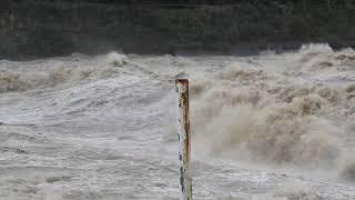 平成29年10月23日 台風21号 増水した信濃川の怒涛(大河津分水路河口)