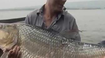 Опасная рыбалка - Зубастая рыба