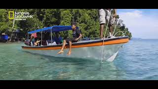 Download Video Cenderawasih, Nabire - National Geographic Indonesia MP3 3GP MP4