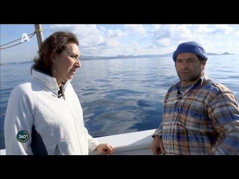 360° - Οδοιπορικό στα νησιά των «γκρίζ@ν ζ@νών» Η 'μάχη' των Ελλήνων ψαράδων στα Ίμια {23/1/2020}